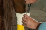 leg_bandaging450x300