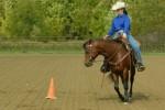 training_a450x300
